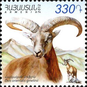 Znaczek pocztowy z armeńskim muflonem